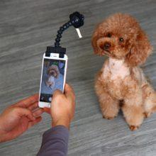 Pet Selfie Stick Dog Cat Portable Flexible Neck Clip