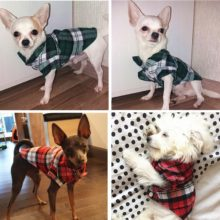 Dog Vest Clothes Small Dogs