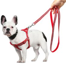 Reflective Dog Harness Leash Lead Set