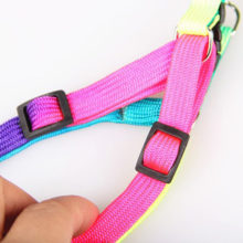 Adjustable Rainbow color Pet Dog Leash Harness